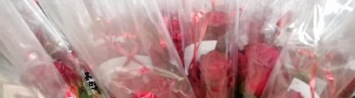 Les roses de la Saint Valentin